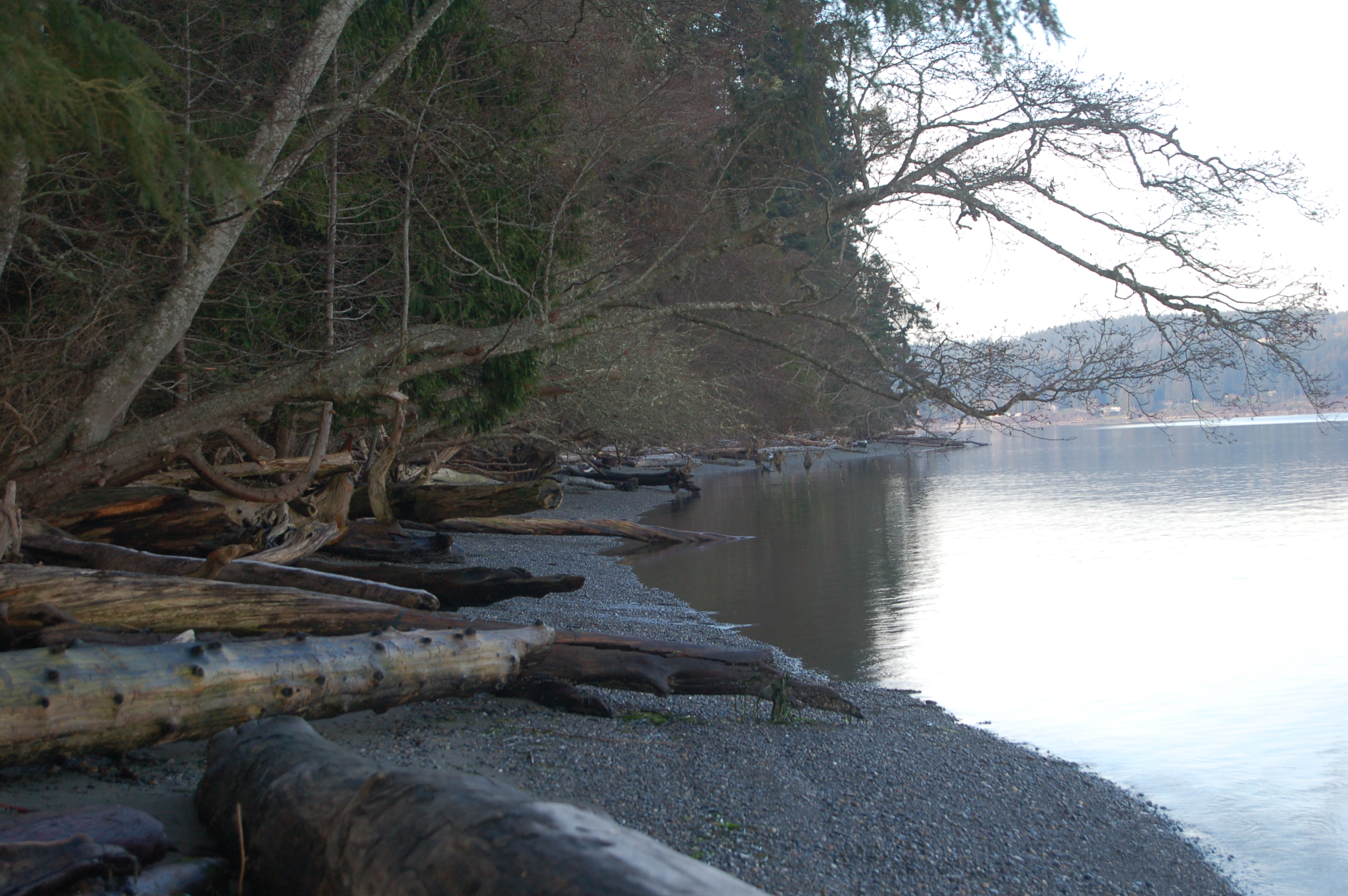 Whidbey Island State Park